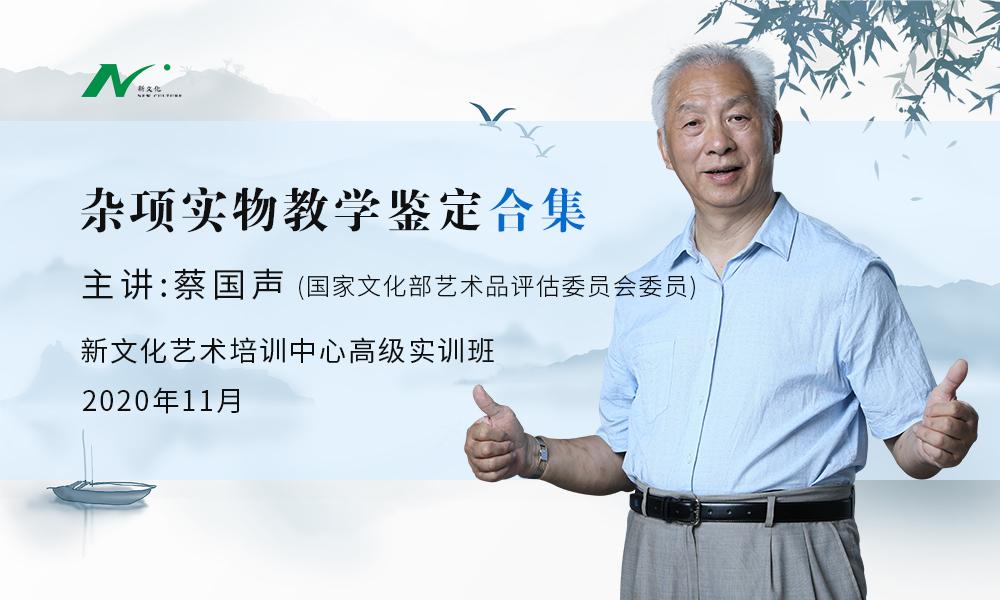 蔡国声老师:杂项实物教学课程合集「线下」